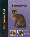 Burmese Cat (Pet Love) - Dennis Kelsey-Wood