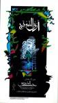 أرق النموذج - محمد المزروعي