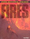 Fires - Leigh Wood