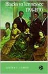 Blacks In Tennessee 1791-1970: Tennessee Three Star Series - Lester C. Lamon