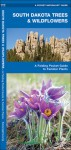 South Dakota Trees & Wildflowers: A Folding Pocket Guide to Familiar Species - James Kavanagh, Raymond Leung