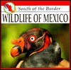Wildlife Of Mexico (South Of The Border) - Mel Higginson