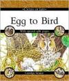 Cycles of Life: Egg to Bird - Carolyn Scrace, David Salariya