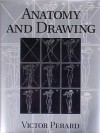 Anatomy and Drawing - Victor Perard