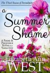 A Summer Shame: A Pride and Prejudice Novella Variation (Seasons of Serendipity Book 3) - Elizabeth Ann West