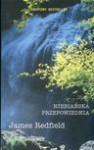 Niebiańska przepowiednia - James Redfield, Dagmara Chojnacka