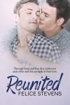Reunited (Rescued Hearts) (Volume 2) - Felice Stevens