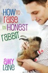 How to Raise an Honest Rabbit - Amy Lane