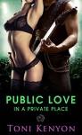 Public Love in a Private Place (Rockstar Romance) (Private Love Book 3) - Toni Kenyon, Hot Tree Editing
