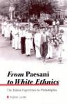 From Paesani to White Ethnics: The Italian Experience in Philadelphia - Stefano Luconi