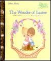 The Wonder of Easter (Little Golden Storybook) - Matt Mitter