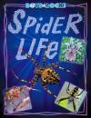 Spider Life - Leslie Dinaberg