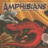 Amphibians: Water-To-Land Animals - Laura Purdie Salas, Kristin Kest