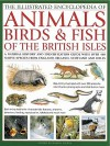 The Illustrated Encyclopedia of Animals, Birds & Fish of the British Isles: A Natural History and Identification Guide with Over 440 Native Species from England, Ireland, Scotland and Wales - Daniel Gilpin