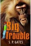 Big Trouble - Susan Gates