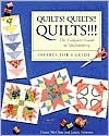 Quilts! Quilts!! Quilts!!!: Instructor's Guide - Diana McClun, Laura Nownes