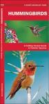 Hummingbirds: A Folding Pocket Guide to Familiar Species - James Kavanagh, Raymond Leung