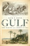 The Gulf: The Making of An American Sea - Jack E. Davis