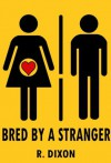 Bred by a Stranger (Gloryhole, Creampie, Breeding) - Raminar Dixon