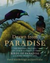 Drawn from Paradise: The Natural History, Art and Discovery of the Birds of Paradise with Rare Archival Art - David Attenborough, Errol Fuller
