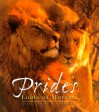 Prides: The Lions of Moremi - Chris Harvey