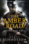The Amber Road (Warrior of Rome) by Sidebottom, Harry (2014) Hardcover - Harry Sidebottom