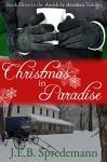 Christmas in Paradise - J.E.B. Spredemann