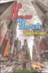 New York: Sebuah Novel Samawi - Damien Dematra