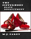 Slave Recruitment - M.J. Carey