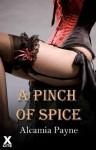 A Pinch Of Spice - Alcamia Payne