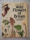 Wild Flowers of Britain - Over a 1000 Species By Photographic Identification - Roger Phillips