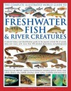 The Complete Illustrated World Guide to Freshwater Fish & River Creatures: A Natural History and Identification Guide to the Aquatic Animal Life of Ponds, Lakes and Rivers, with More Than 700 Detailed Illustrations and Photographs - Daniel Gilpin