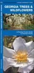 Georgia Trees & Wildflowers: A Folding Pocket Guide to Familiar Species - James Kavanagh, Raymond Leung