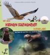 Mit dem kleinen Salamander durchs Jahr: Das Buch für von Natur aus neugierige Kinder - Monika Niehaus