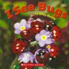 I See Bugs - Wiley Blevins