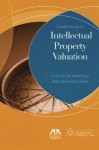 Fundamentals of Intellectual Property Valuation: A Primer for Identifying and Determining Value - Wes Anson
