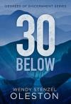 30 Below (Degrees of Discernment Book 1) - Wendy Stenzel Oleston