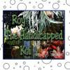 Roy the Handicapped Koi - N. J. Thornton, Jane Smith