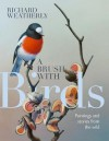 A Brush with Birds: Paintings and stories from the wild - Richard Weatherly