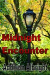 Midnight Encounter - Addison Albright