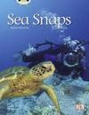 Sea Snaps Green 1 - Diana Noonan