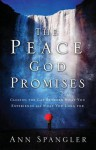 The Peace God Promises: Closing the Gap Between What You Experience and What You Long for - Ann Spangler