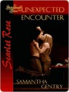 Unexpected Encounter - Samantha Gentry