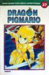 Dragon Pigmario Vol. 27 - Shinji Wada