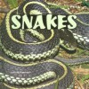 Snakes - Joanne Randolph