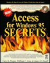 Access for Windows 95 Secrets (The Secrets Series) - Cary N. Prague, James D. Foxall, William C. Amo