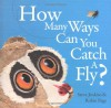 How Many Ways Can You Catch a Fly? - Steve Jenkins, Robin Page