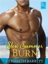 Slow Summer Burn: A Loveswept Contemporary Romance (Star Harbor) - Elisabeth Barrett