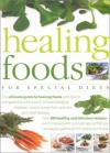 Healing Foods for Special Diets - Anne Sheasby