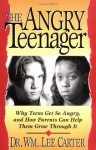 The Angry Teenager Why Teens Get So Angry And How Parents Can Help Them Grow Through It - William Lee Carter